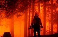 رعب في كاليفورنيا من تصاعد خطر حرائق الغابات وقطع الكهرباء عن 50 ألف شخص